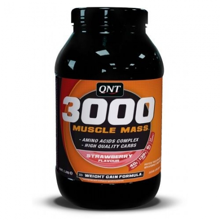 QNT Muscle Mass 3000, 1,3kg Dose